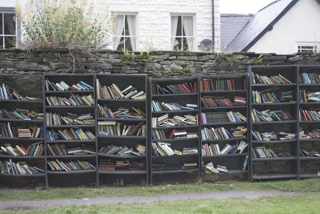 Libros en la calle.